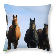 Ireland Thoroughbred Yearlings Throw Pillow
