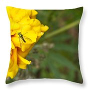 Iridescent Fly On Marygold Throw Pillow