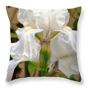 Iridescent Iris Throw Pillow