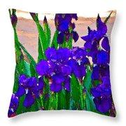 Iris 23 Throw Pillow by Pamela Cooper