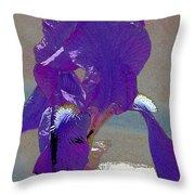 Iris 37 Throw Pillow