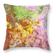 Iris Abstract I Throw Pillow