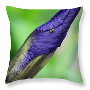 Iris And Friend Throw Pillow