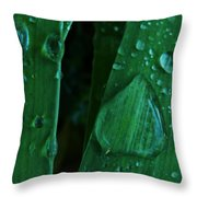 Iris Drops Throw Pillow