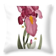Iris II In Full Color Throw Pillow by Anne Norskog