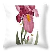 Iris II In Full Color Throw Pillow