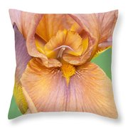 Iris In Gold  Throw Pillow