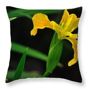 Iris In Yellow Throw Pillow