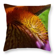 Iris Stamen Macro Throw Pillow