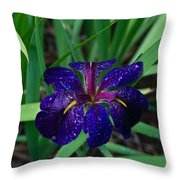 Iris With Rain Drops Throw Pillow