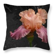 Iris2 Throw Pillow