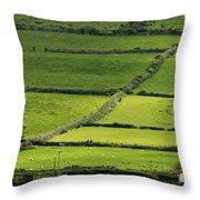 Irish Countryside Near Valenica Island Throw Pillow