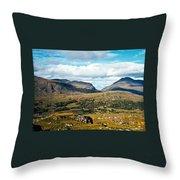 Irish Landscape 100 Throw Pillow