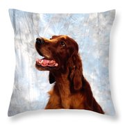 Irish Red Setter Throw Pillow