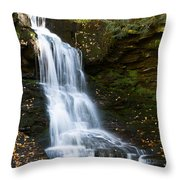 Is It Cottonwood Throw Pillow