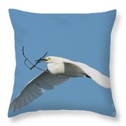 Is It Nesting Time  Throw Pillow