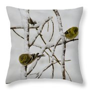Is It Snowing On Your Side Throw Pillow