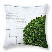 Isaiah 58 Vs 12 Throw Pillow