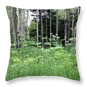 Isle Royale National Park Throw Pillow