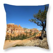 Isloation Throw Pillow