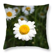 Isn't That A Daisy Throw Pillow