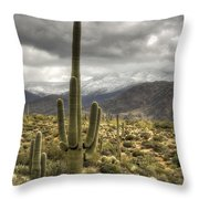It Does Snow In The Desert Throw Pillow