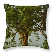 It Should Be Easy Throw Pillow