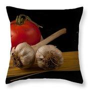 Italian Palate Number 5 Throw Pillow