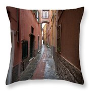 Italian Pathway Throw Pillow