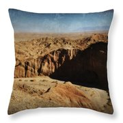 It's A Big Desert Out There Throw Pillow
