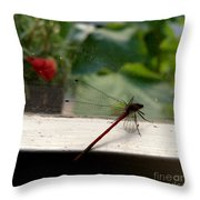 It's Always Greener Throw Pillow