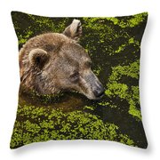 It's Cool In Here Throw Pillow