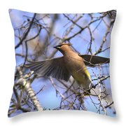 It's Flying Time Again Throw Pillow