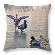 Its Hard To Lead When No One Will Follow Throw Pillow