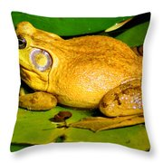 Its My Pad Throw Pillow