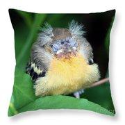 It's Nap Time Throw Pillow
