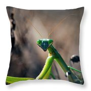 It's Time To Pray Throw Pillow