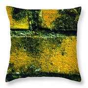 Ivy And Old Wall Throw Pillow