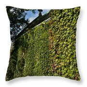 Ivy Covered Chapel Throw Pillow