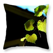 Ivy League Throw Pillow