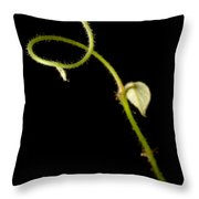 Ivy Tendril Throw Pillow