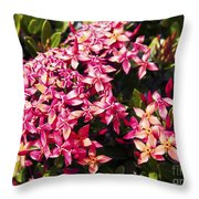 Ixora Throw Pillow