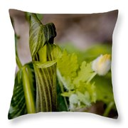 Jack And Rose Together Again Throw Pillow