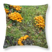 Jack Olantern Mushrooms 15 Throw Pillow