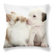 Jack Russell Terrier Puppy And Baby Throw Pillow