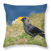 Jackdaw Gathering Nesting Materials Throw Pillow
