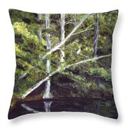 Jackson Bluff On The Waccamaw River Throw Pillow