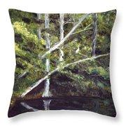Jackson Bluff On The Waccamaw River Throw Pillow