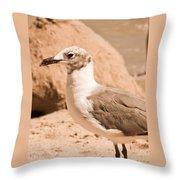 Jagr Throw Pillow