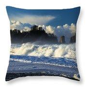 James Island Surf Throw Pillow